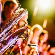 Festival et concert